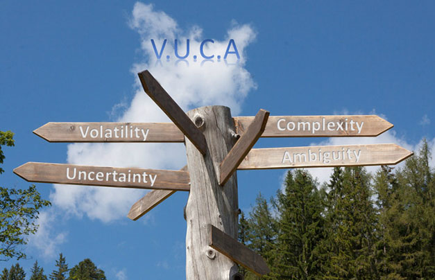 VUCA - intelligence artificielle - Wukali - Pierre Fruitier-Roth Fruitier Roth