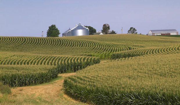 Jane Smiley 1000 acres